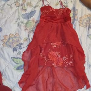 Other - Roses dress